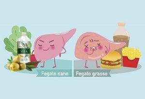 hai il fegato grasso